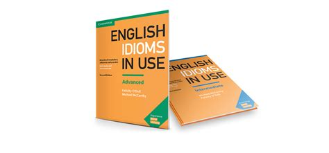 Idioms In Use English Edition