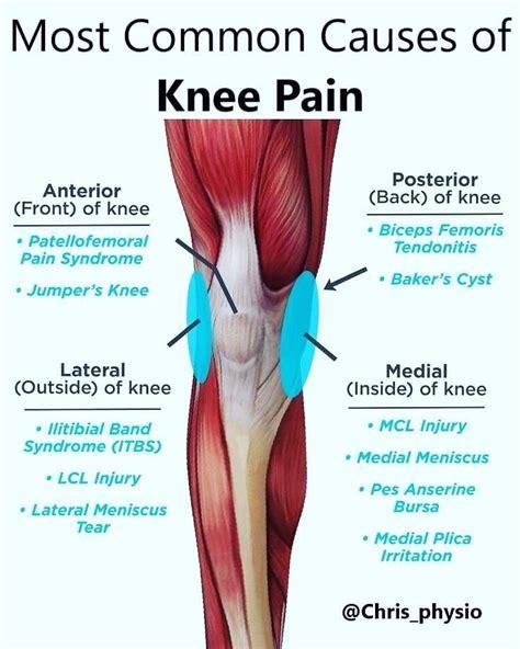 Knee Diagram Chart