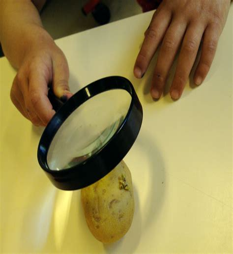 L Espace A La Loupe