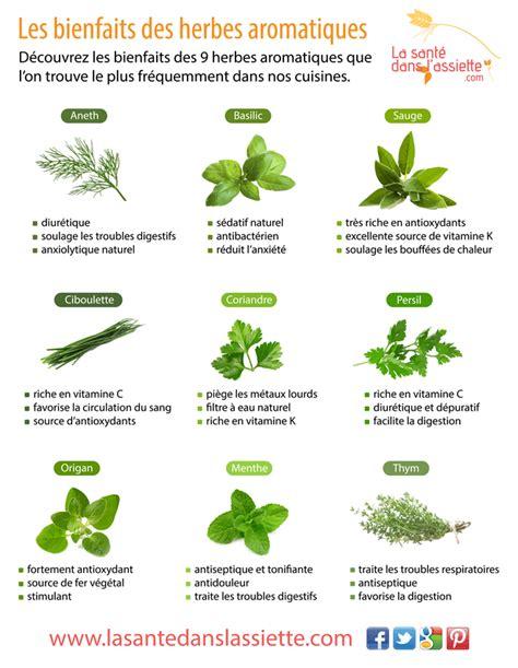 La Cuisine Des Epices Des Herbes Et Des Aromates