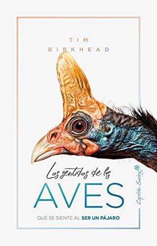 Los Sentidos De Las Aves Ensayo