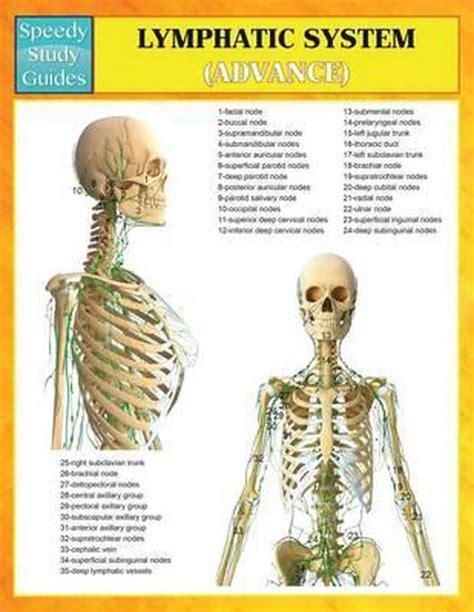Lymphatic System Advanced Speedy Study Guides Speedy Publishing