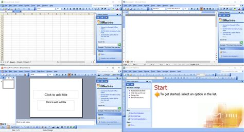 Microsoft Office Access 2003: Professional Results