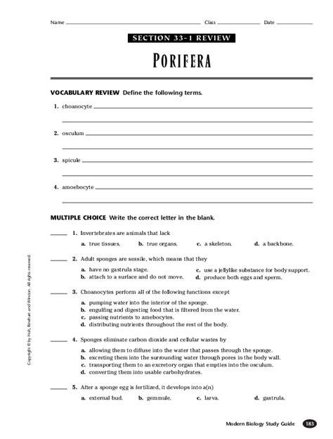 Modern Biology Study Guide Porifera
