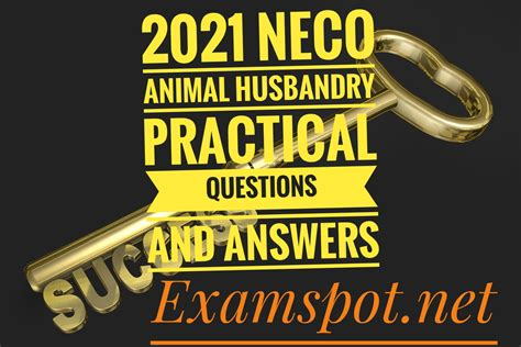 Instructions to Look Ahead to Neco Questions and Answers 2020