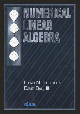 Numerical Linear Algebra Trefethen Solutions Manual