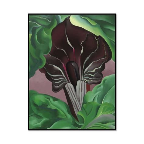 O Keeffe On Paper National Gallery Of Art Publications