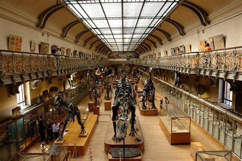 Paris Musees Histoire Des Musees De La Ville De Paris