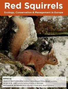 Red Squirrels Ecology Conservation And Management In Europe