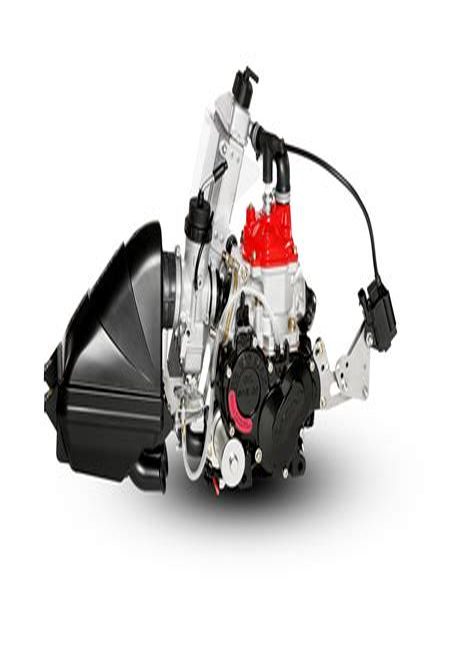 Rotax Kart Engines Operators Manual