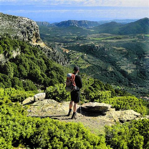 Sardinia: Car Tours and Walks (Landscapes)