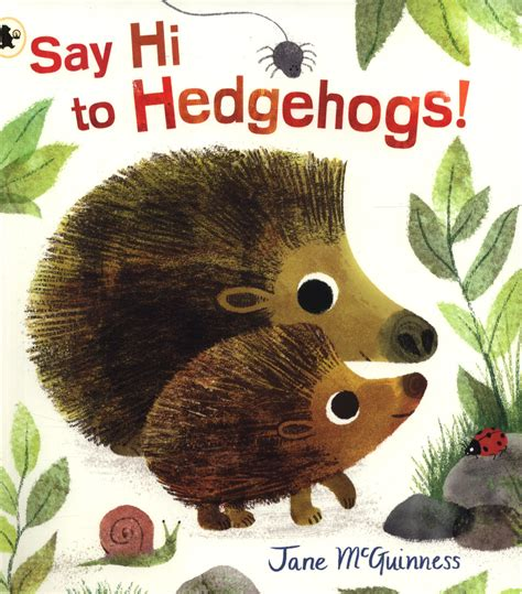 Say Hi To Hedgehogs Nature Storybooks