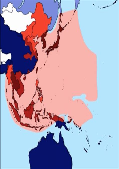 Seconda guerra mondiale: Giorno dopo giorno