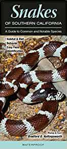 Snakes Of Southern California A Guide To Common And Notable Species Quick Reference Guides