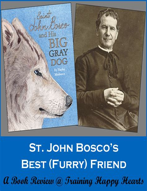 St John Bosco And His Big Gray Dog