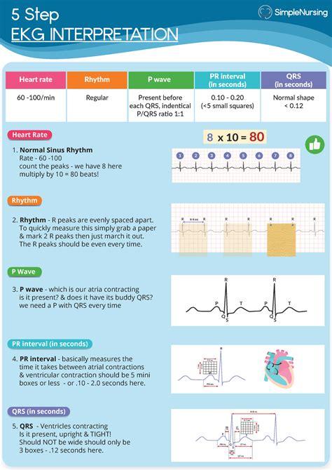 Study Guide For Ekg Technician Certification