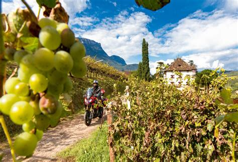 Sudtiroler Weinstrasse