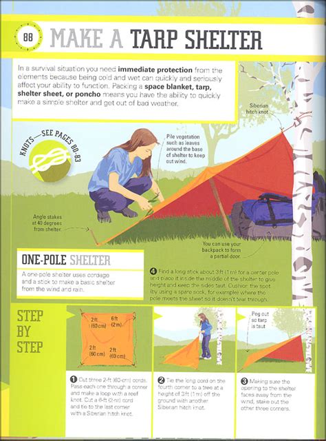 Survival A Step By Step Guide To Camping And Outdoor Skills