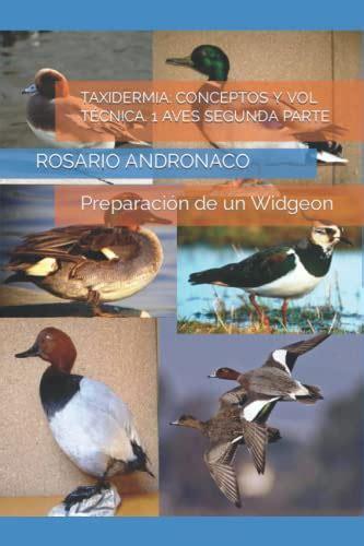 Taxidermia Conceptos Y Vol Tecnica 1 Aves Segunda Parte Preparacion De Un Widgeon