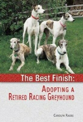 The Best Finish Adopting A Retired Racing Greyhound