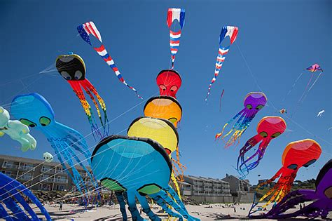 The Kites Are Flying