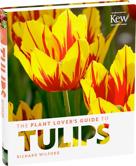 The Plant Lovers Guide To Tulips The Plant Lovers Guides