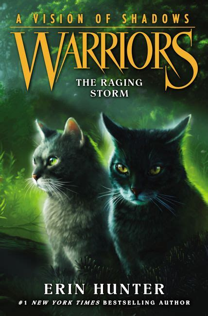 The Raging Storm Warriors A Vision Of Shadows