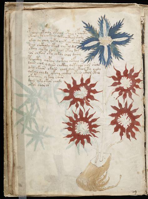 The Voynich Manuscript Anglais
