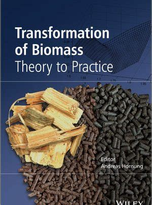 Transformation Of Biomass Theory To Practice