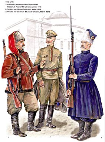 Ukrainian Armies 1914 55 Men At Arms