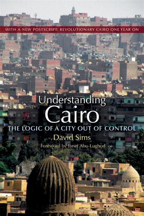 Understanding Cairo The Logic Of A City Out Of Control English Edition