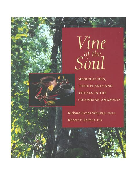 Vine Of The Soul Medicine Men Their Plants And Rituals In The Colombian Amazonia