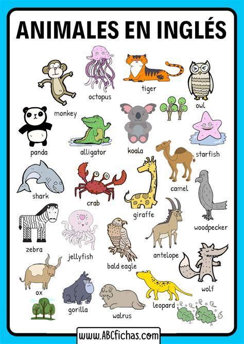 Vocabulario De Ingles Animales