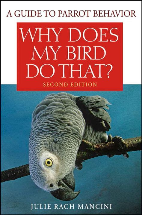 Why Does My Parrot Why Does My English Edition