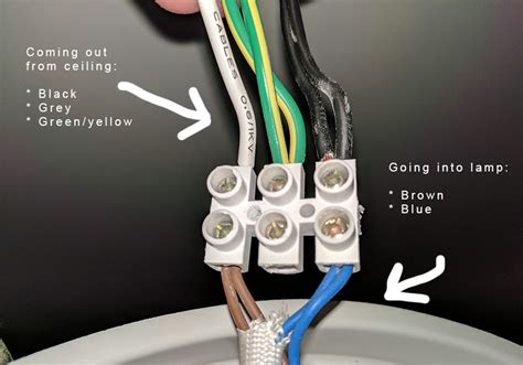Home Electrical Wiring Blue Wire Basics