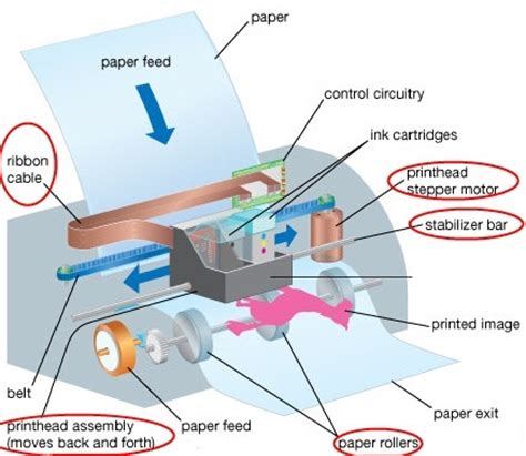 Inside Printer Diagram