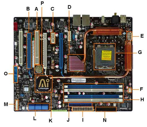 Labeled Motherboard Diagram