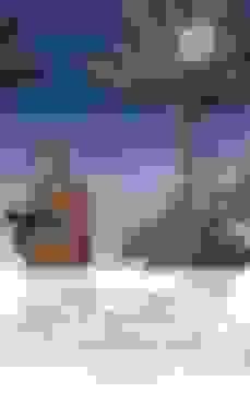 libros de maravillas el viaje de san brandan biblioteca medieval