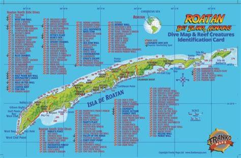 roatan honduras dive map and reef creatures guide franko maps laminated fish card