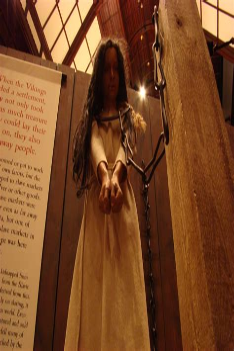 the viking s captive